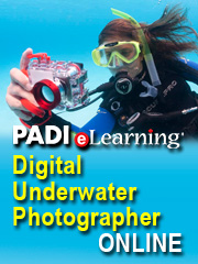 PADI eLearning banner photo Digital Underwater Photography
