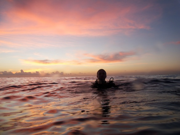 diver in the sunset