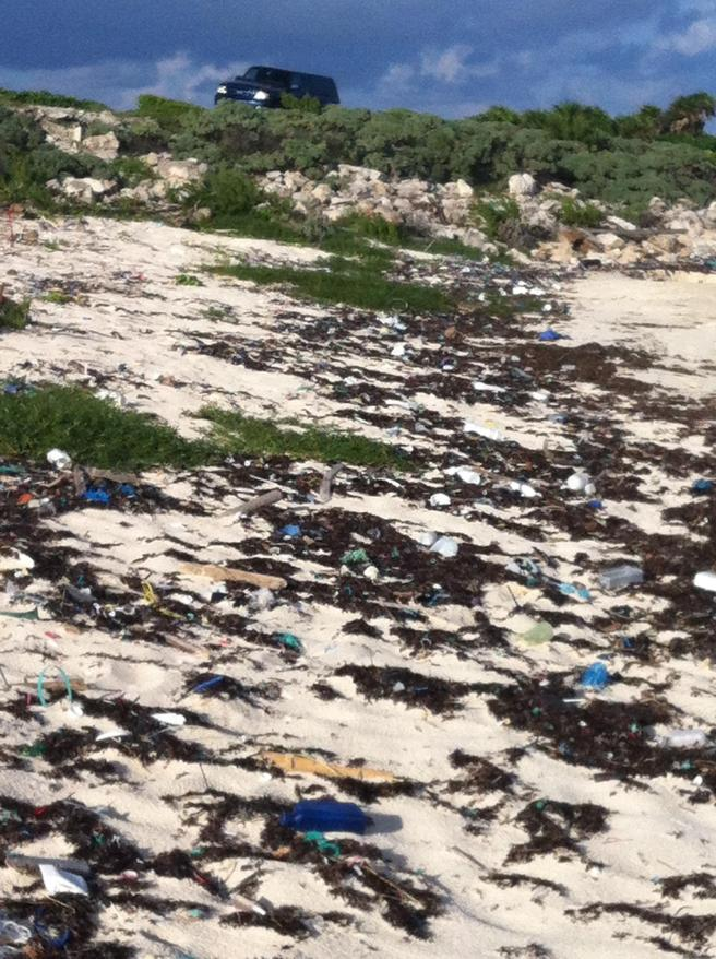 before photo of september beach cleanup at blue angel cozumel