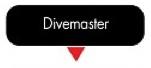 PADI flowchart DIVEMASTER image