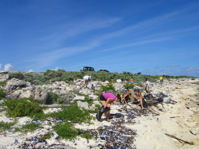 beach cleanup, cozumel