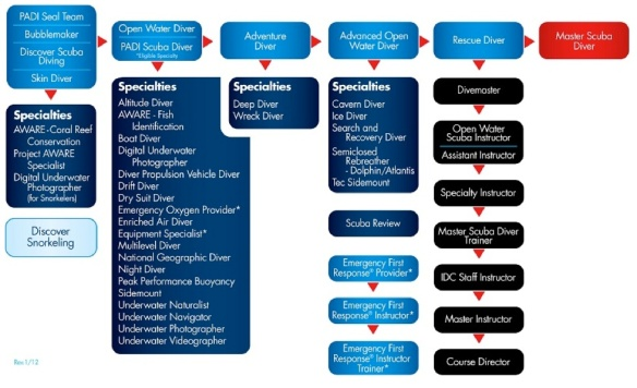 PADI training flowchart